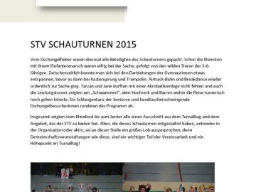 thumbnail of 1503_STV_Neujahrsbote